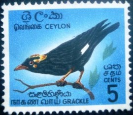 Selo postal do Ceilão de 1966 Southern grackle - 374 N