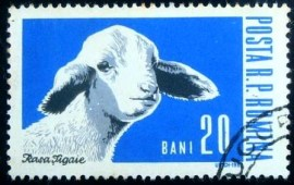 Selo postal da Romênia de 1962 Domestic sheep