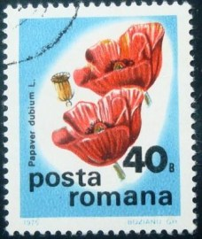Selo postal da Romênia de 1975 Long-headed Poppy