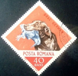 Selo postal da Romênia de 1965 Retriever with eurasian woodcock