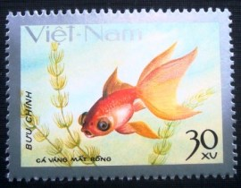 Selo postal do Vietnam de 1977 Mat rong / Dragon-eyed Goldfish