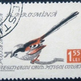 1959 - Long-tailed Tit